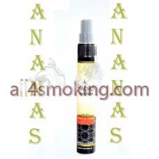 Aroma tutun Smoks Ananas 30 ml